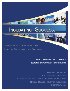 Executive Summary - EDA Incubator Tool