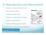 5. Reproduction and Recruitment