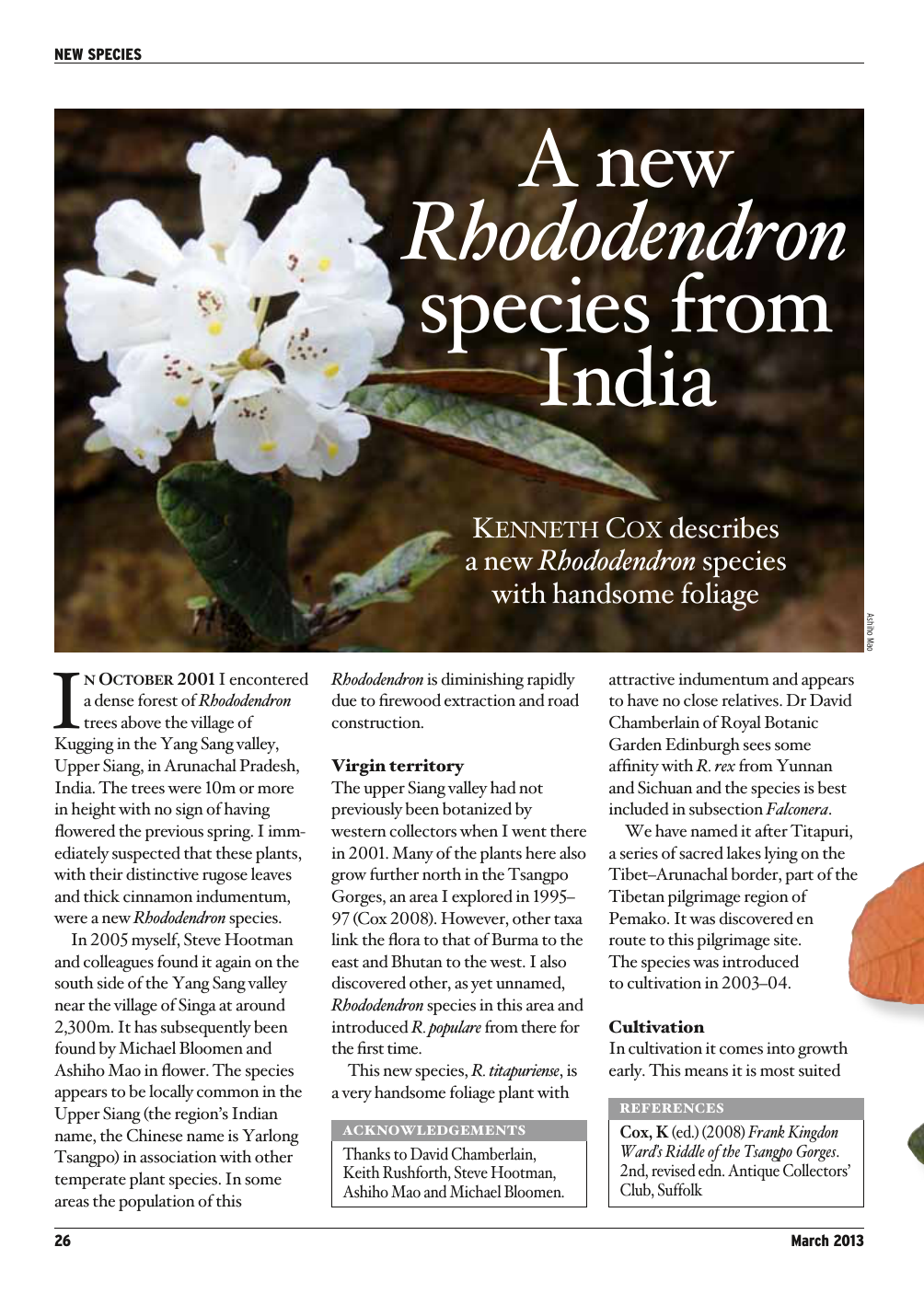 A New Rhododendron Species From India