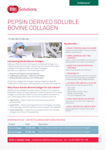 pepsin derived soluble bovine collagen