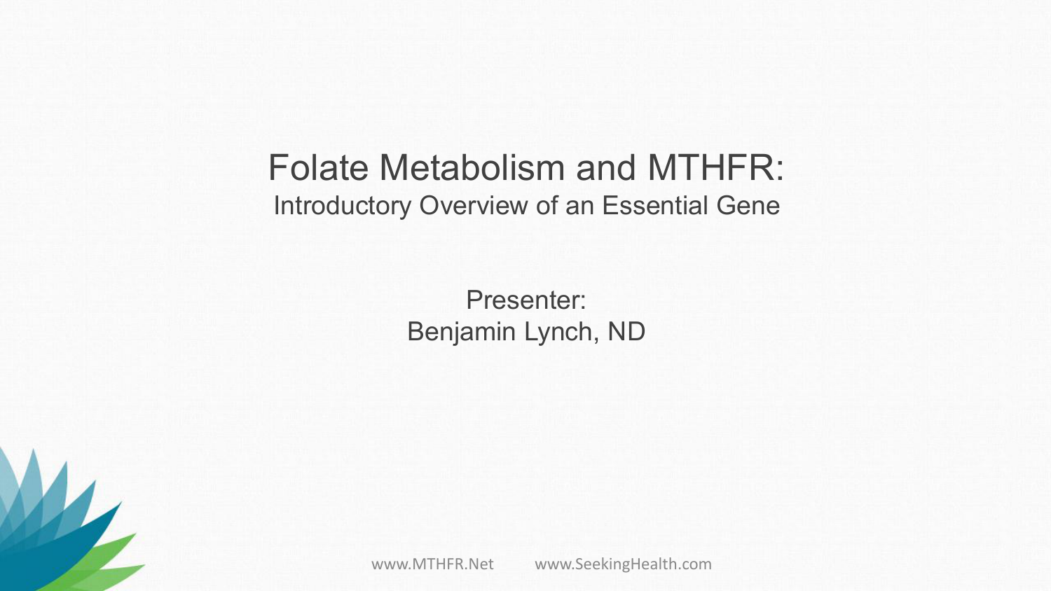 Folate Metabolism and MTHFR