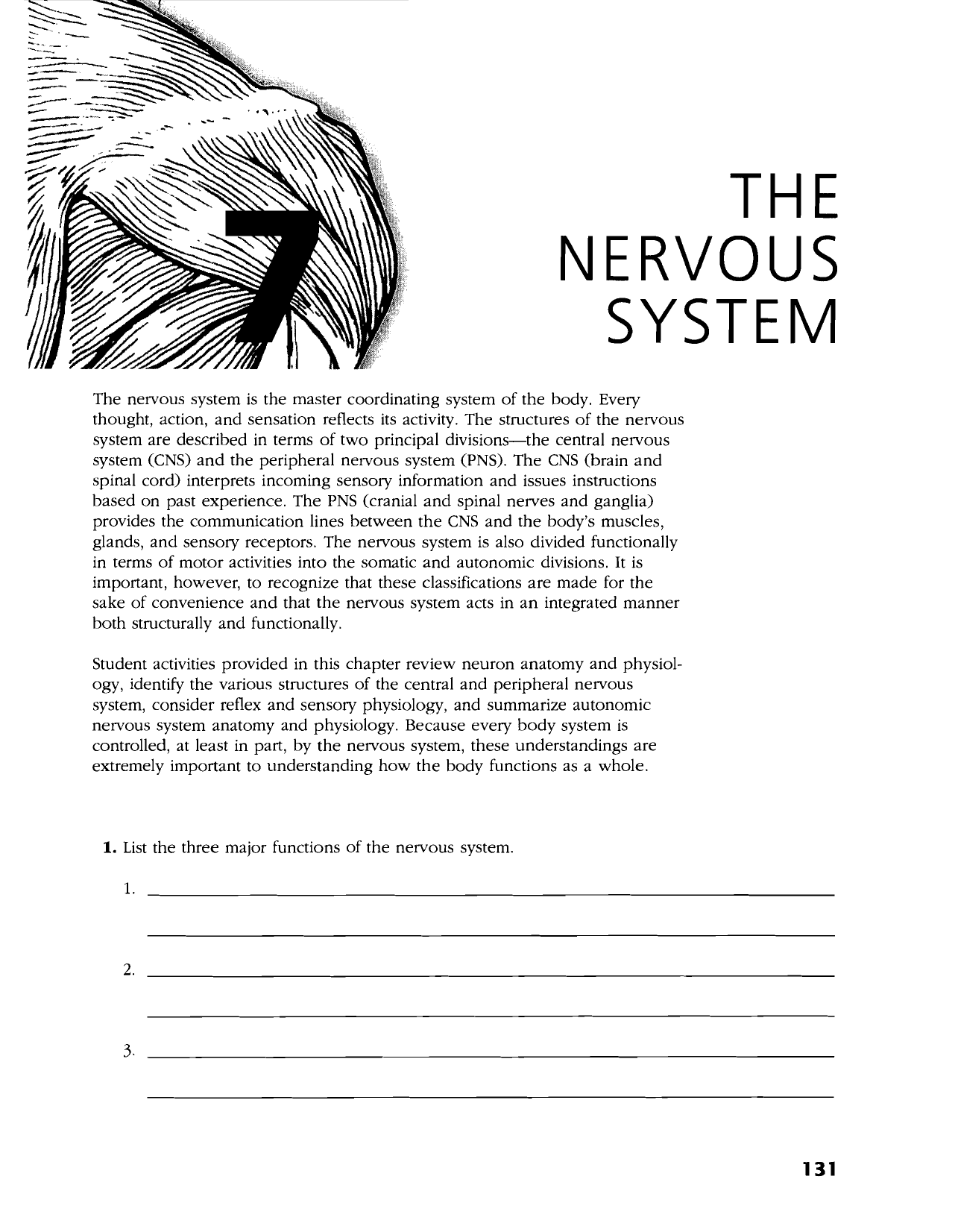 anatomy and physiology the nervous system The part of the peripheal nervous system that brings information to the central nervous system is.