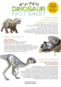 Erth`s Dinosaur fact sheet trex