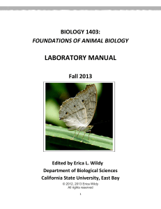 laboratory manual - learning is wild!