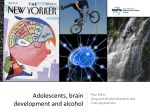 The Adolescent Brain And Alcohol - Drug and Alcohol Research and