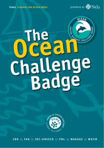 The Ocean Challenge Badge - Food and Agriculture Organization of
