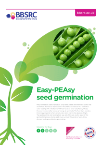 Easy-PEAsy seed germination