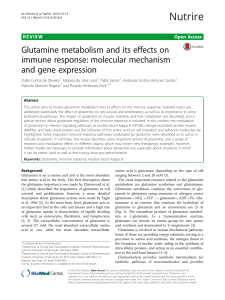 Glutamine metabolism and its effects on immune response