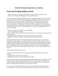 Food and Feeding Habits in Fish