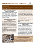 Hantavirus - Cascade City County Health Department