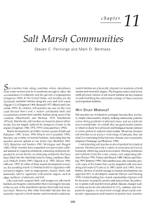Salt Marsh Communities
