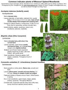 Common indicator plants of Missouri Upland Woodlands