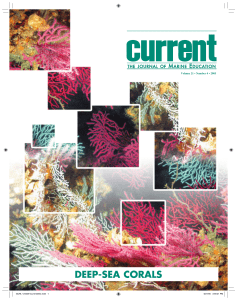 Deep-Sea Corals: Special Issue of Current, the Journal of Marine