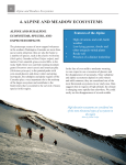 4. alpine and meadow ecosystems