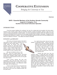 BATS - Essential Members of the Southern Nevada Community