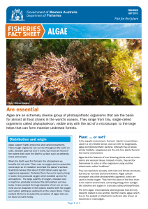 Fisheries Fact Sheet - Algae
