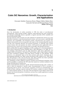 Cubic SiC Nanowires: Growth, Characterization and