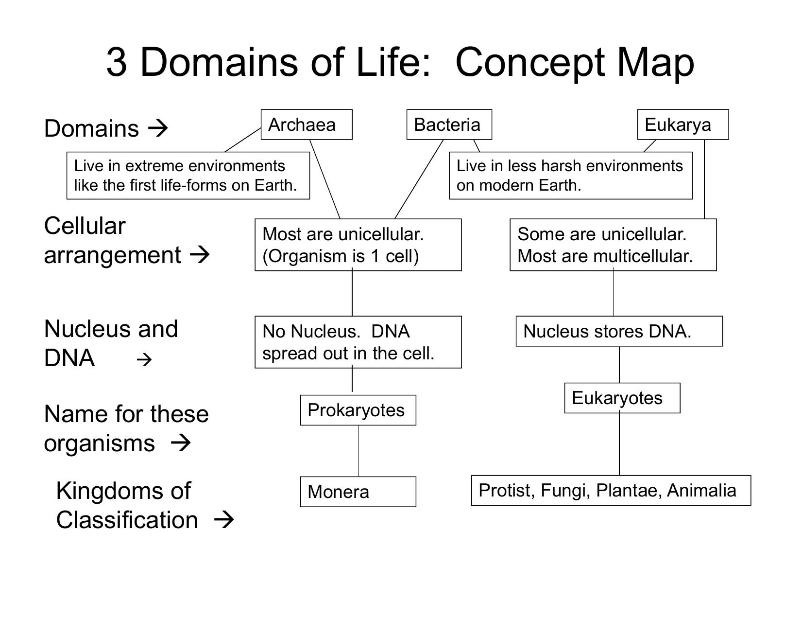 Concept Map Bacteria.3 Domains Of Life Concept Map