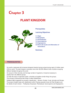 PLANT KINGDOM Chapter 3