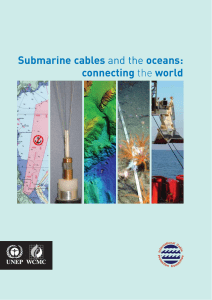 Submarine cables and the oceans - International Cable Protection