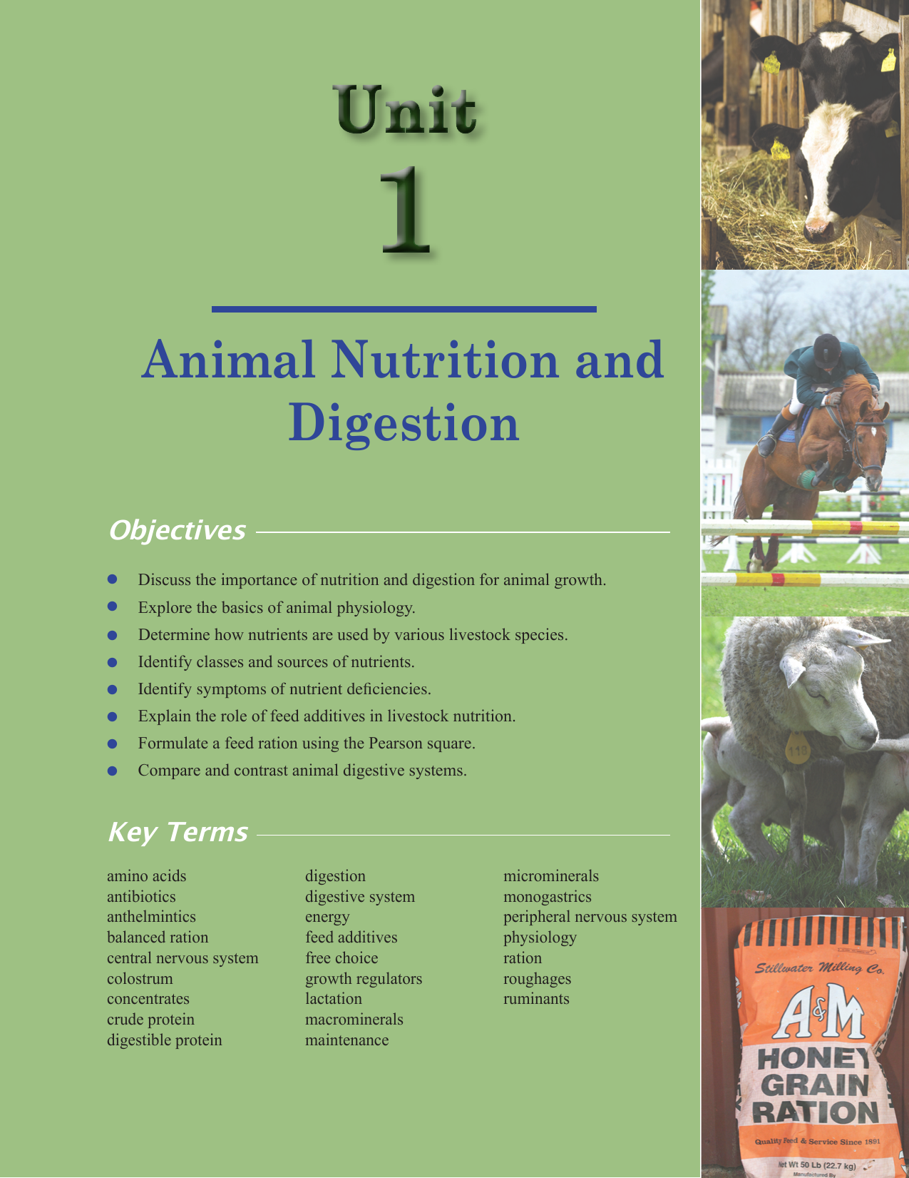 Animal Nutrition and Digestion