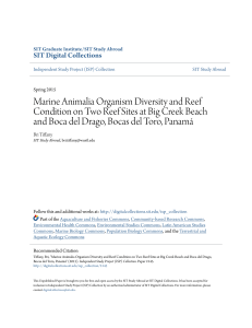 Marine Animalia Organism Diversity and Reef Condition on Two
