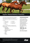 Equine-related Business Insurance