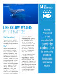 LIFE BELOW WATER: WHY IT MATTERS