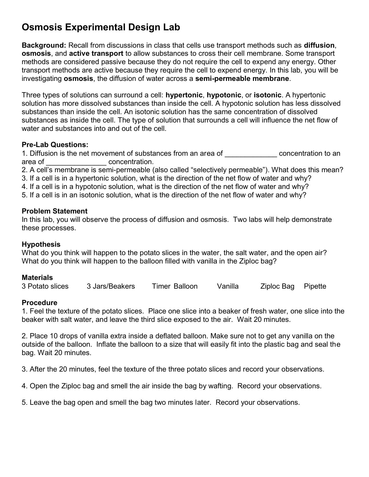 osmosis potato experiment lab report