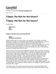 Tilapia: the fish for the future?