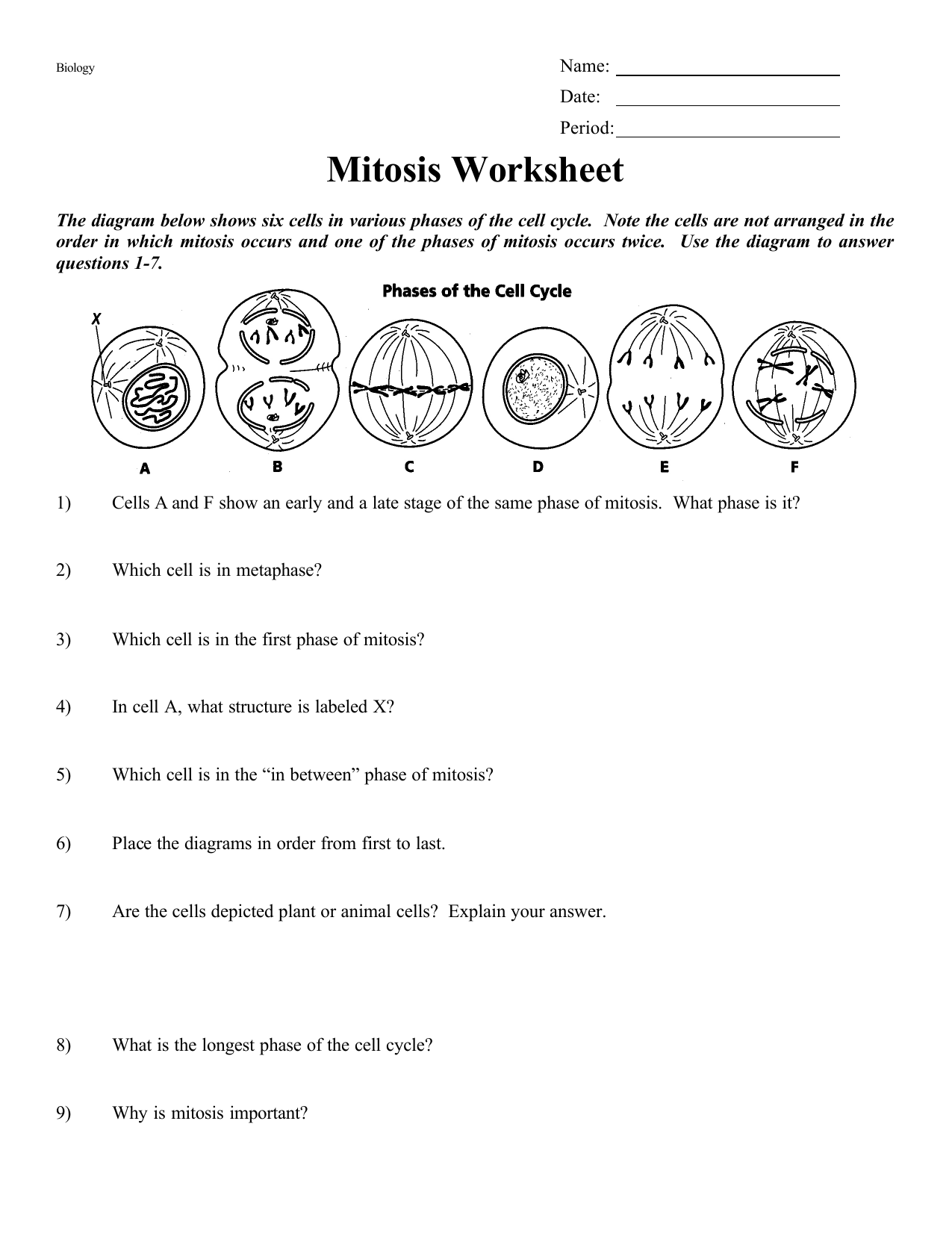 cell cycle diagram blank worksheet – vmglobal co as well Cell Cycle Worksheet   Homedressage together with cell division coloring worksheet – psubarstool likewise 6  THE CELL CYCLE WORKSHEET moreover pill cycle period – 7th Grade Math Worksheets also Mitosis Worksheet as well Cell Cycle Coloring Worksheet Answer Key Phases the Cell Cycle further Cell Cycle Labeling Worksheet Answers New Cell Cycle Diagram Labeled in addition The Cell Cycle further Cell Cycle And Mitosis Worksheets   Teaching Resources   TpT moreover mitosis coloring pages – ecancerargentina org besides mitosis coloring pages – festivnation as well The Amoeba Sisters the Cell Cycle and Cancer Video Worksheet Fresh furthermore Cell Cycle Drawing Worksheet At Paintingvalley   Explore Division in addition Cell Cycle Coloring Worksheet Cell Cycle Synchronization On Ice and besides Cell Cycle Labeling. on the cell cycle diagram worksheet