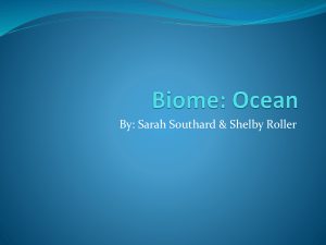 Biome: Ocean - Ohio County Schools