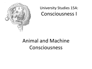 Animal and Machine Consciousness