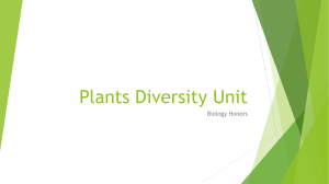 Plants Diversity Unit - Everglades High School