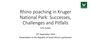 Rhino poaching in Kruger National Park