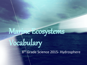 Marine Ecosystems Vocabulary