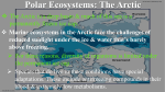 Polar Ecosystems: The Arctic