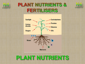 Lesson 1 - Why we need fertilisers