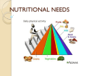 Nutrition - PP3 Nutritional Needs