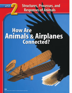 Chapter 6: Introduction to Animals