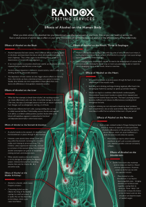 Effects of Alcohol on the Human Body