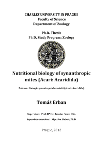 Ph.D. Thesis_Erban_Tomas