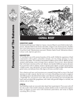 Coral Reef Fact Sheet - Bahamas National Trust