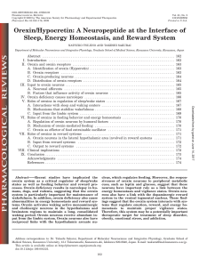 Orexin/Hypocretin: A Neuropeptide at the Interface of Sleep, Energy