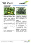 Brazilian Cherry fact sheet