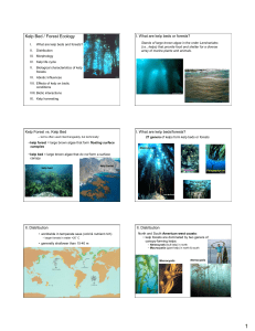 16_kelp forest ecology