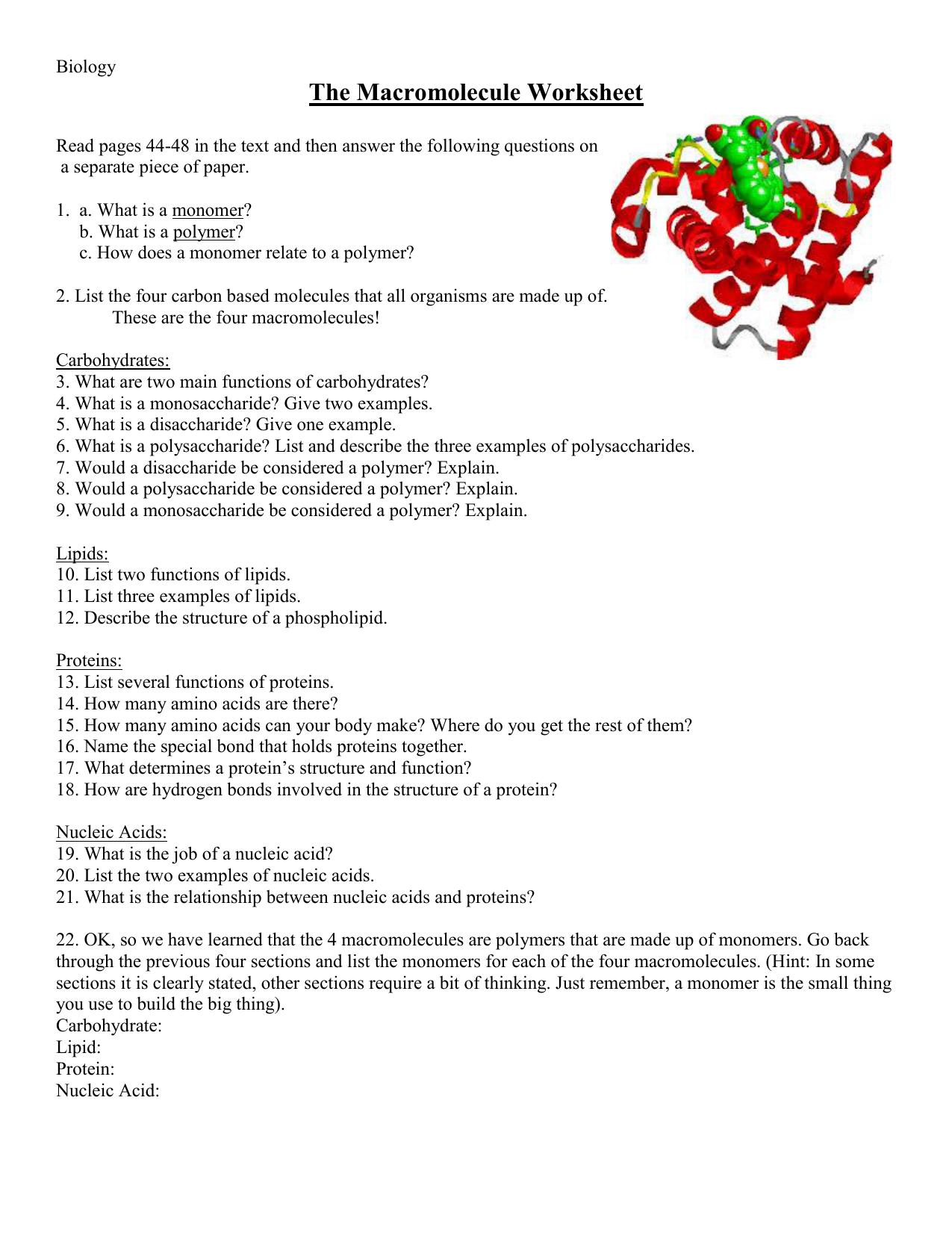 Worksheets Macromolecules Worksheet the macromolecule worksheet 014401035 1 5b3439c96e5e93f5e8135128e4e39b01 png