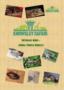 Untitled - Knowsley Safari Park