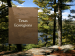 Texas Ecoregions - Flipped Out Science with Mrs. Thomas!