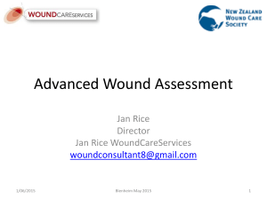 Jan Rice - `Advanced wound assessment`